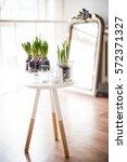 white scandinavian spring... | Shutterstock . vector #572371327