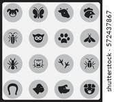 set of 16 editable zoo icons.... | Shutterstock . vector #572437867
