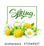 inscription spring time on... | Shutterstock .eps vector #572569327