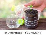 Planting Seedlings In Plastic...