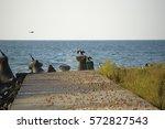 summer landscape at the vadu... | Shutterstock . vector #572827543