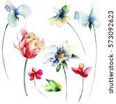 Stock photo set of wild flowers watercolor illustration 573092623