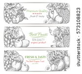 vector banners of  grape bunch  ... | Shutterstock .eps vector #573108823