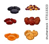vector dried fruits. isolated... | Shutterstock .eps vector #573113323