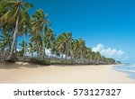 beautiful tropical coastline... | Shutterstock . vector #573127327