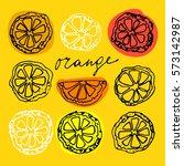 sketched citrus fruits orange... | Shutterstock . vector #573142987