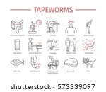 tapeworms. symptoms  treatment. ... | Shutterstock .eps vector #573339097