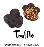 two truffles with typography | Shutterstock .eps vector #573360823