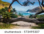 nature around the hole in the... | Shutterstock . vector #573495307