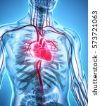 3d illustration of heart   part ...   Shutterstock . vector #573721063