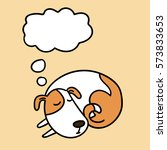 cute sleeping dog funny dog