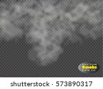 fog or smoke isolated... | Shutterstock .eps vector #573890317