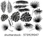 silhouettes of tropical  leaves ... | Shutterstock .eps vector #573929047