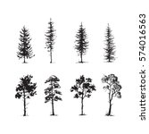 Trees Sketch Set  Hand Drawing...
