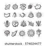 food set. doodle vegetables... | Shutterstock .eps vector #574024477