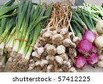 display of fresh green and white onions and garlic - stock photo