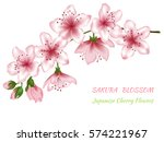 vector illustration of spring... | Shutterstock .eps vector #574221967