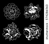 vector black and white peonies... | Shutterstock .eps vector #574286563