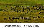 Sheep Flock And Shepherd