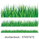 row of grass - stock vector