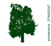 old pine tree green silhouette...   Shutterstock .eps vector #574630267