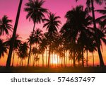 silhouette coconut palm trees... | Shutterstock . vector #574637497