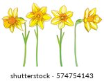 vector set with outline yellow... | Shutterstock .eps vector #574754143