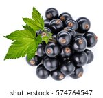 black currant branch isolated... | Shutterstock . vector #574764547