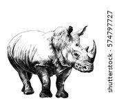 Rhino Sketch Vector