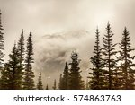 white pass and yukon route... | Shutterstock . vector #574863763