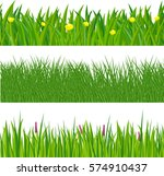 lush green fresh spring grass... | Shutterstock .eps vector #574910437