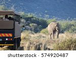 elephant encounter on a game... | Shutterstock . vector #574920487