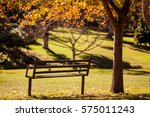 empty park bench by tree during ... | Shutterstock . vector #575011243
