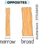 opposite words for narrow and... | Shutterstock .eps vector #575136433