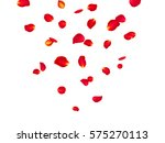 red rose petals background. a... | Shutterstock .eps vector #575270113