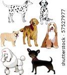 jpg raster illustration of 7... | Shutterstock . vector #57527977