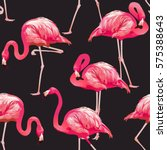 tropical bird flamingo... | Shutterstock .eps vector #575388643