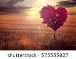 Red Heart Shaped Tree In The...