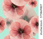 Poppy. Colorful Texture Of...