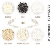 different types of rice grains... | Shutterstock .eps vector #575943733