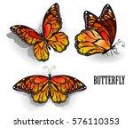 set of orange  realistic ... | Shutterstock .eps vector #576110353