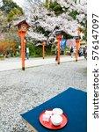 Small photo of Sakura-cha, Tea of Cherry blossoms, in Hirano Jinja Shrine, Kyoto, Japan