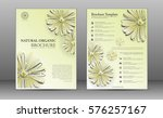 spa brochure template design... | Shutterstock .eps vector #576257167