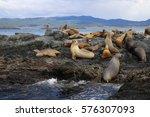 ushuaia | Shutterstock . vector #576307093
