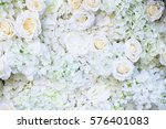 Stock photo white rose flower on wall background 576401083