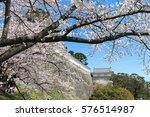 nihonmastu castle and cherry... | Shutterstock . vector #576514987