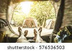 point of view with couple of... | Shutterstock . vector #576536503