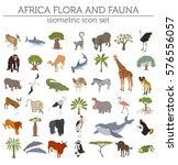 flat 3d isometric africa flora... | Shutterstock .eps vector #576556057