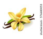 vanilla isolated on white photo ... | Shutterstock .eps vector #576680053