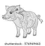 pig coloring book page for... | Shutterstock .eps vector #576969463